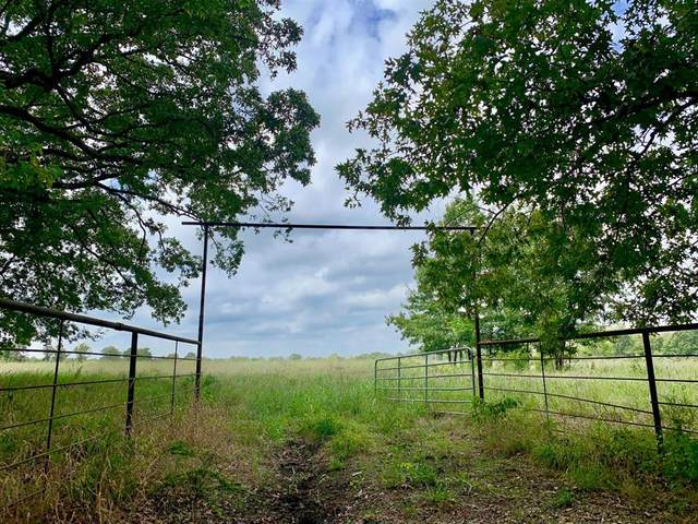 Tract 2 County Rd 1350, Clarksville, TX 75426 (MLS #14486617) :: VIVO Realty