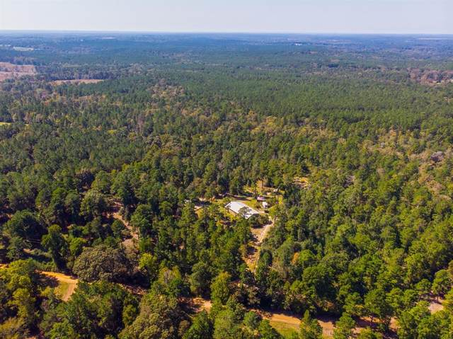 3539 County Road 1620, Grapeland, TX 75844 (MLS #14495315) :: Real Estate By Design