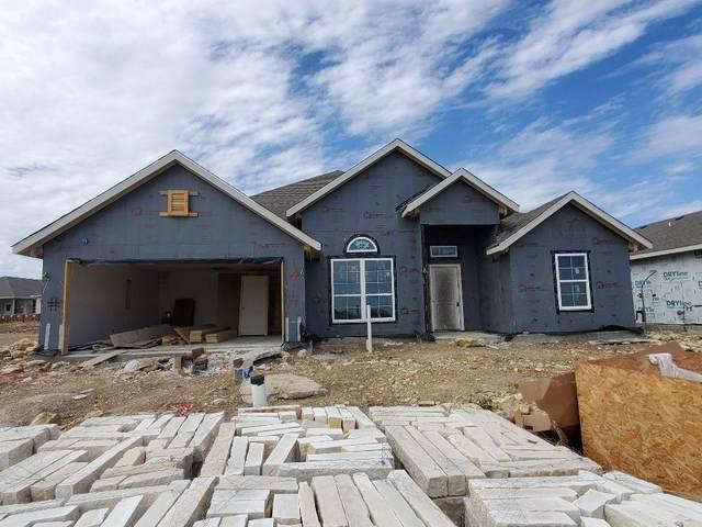 14117 Cassiopeia Drive, Fort Worth, TX 76052 (MLS #14499756) :: Team Hodnett
