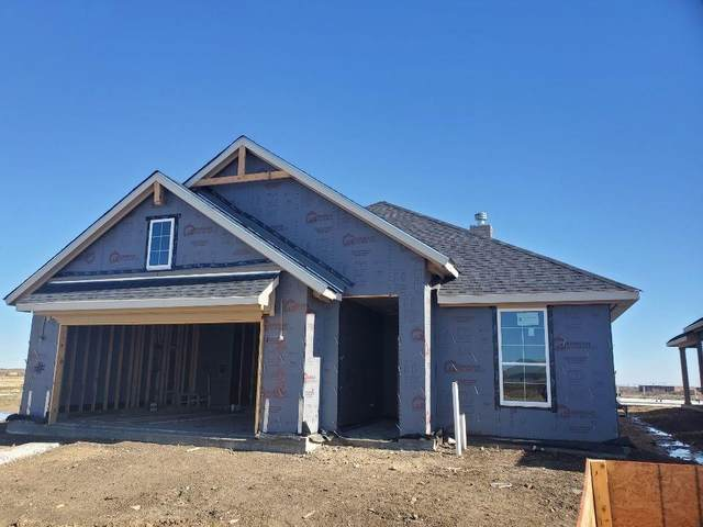 14148 Borealis Drive, Fort Worth, TX 76052 (MLS #14499772) :: Team Hodnett