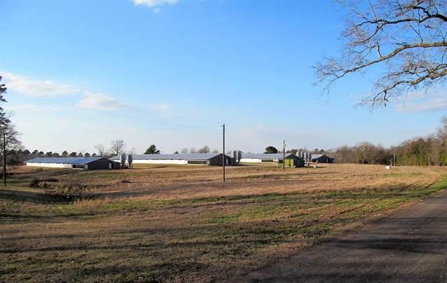 768 County Road 4480, Winnsboro, TX 75494 (MLS #14503150) :: The Kimberly Davis Group