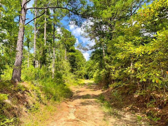 00 Ip Road 1, Jefferson, TX 75657 (MLS #14504094) :: Real Estate By Design