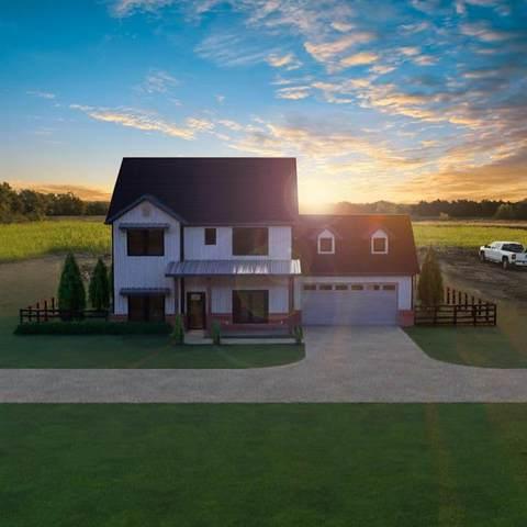 3908 Fm 75, Princeton, TX 75407 (MLS #14505357) :: The Hornburg Real Estate Group