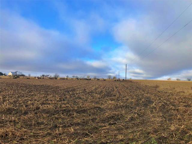 00000 County Road 318, Gainesville, TX 76240 (MLS #14506488) :: Real Estate By Design