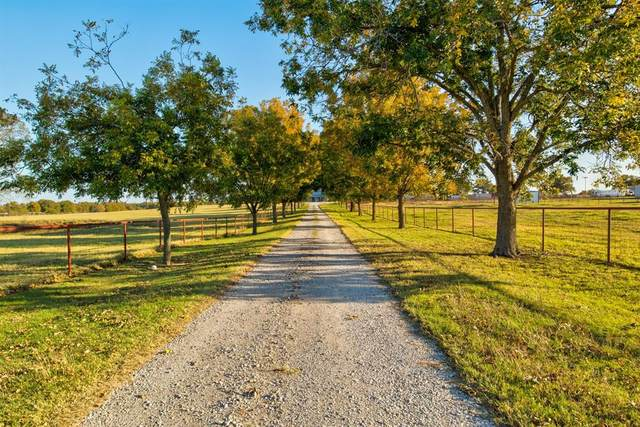 7162 County Road 176, Stephenville, TX 76401 (MLS #14515512) :: Real Estate By Design