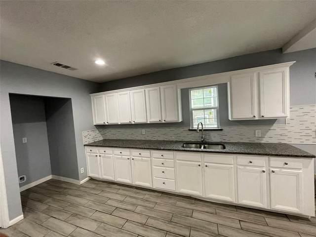 1519 E Elmore Avenue, Dallas, TX 75216 (MLS #14517001) :: Robbins Real Estate Group