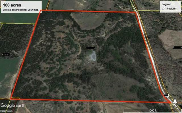 160A County Road 417, May, TX 76857 (MLS #14520458) :: All Cities USA Realty