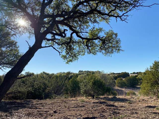 Lot 16 Honey Creek Pass, Hico, TX 76457 (MLS #14520828) :: The Kimberly Davis Group