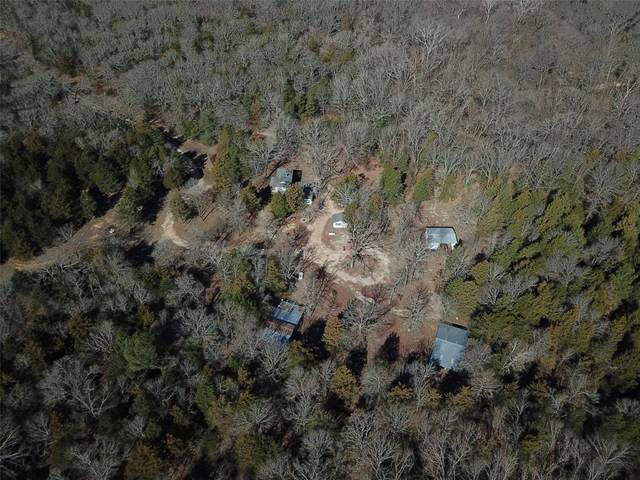 TBD County Rd 2315 E Of, Telephone, TX 75488 (MLS #14526827) :: The Kimberly Davis Group