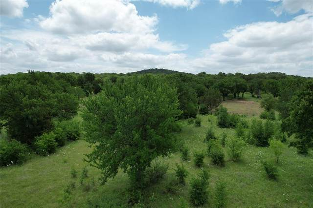 Lot 28 Mountain Bluebird Court, Possum Kingdom Lake, TX 76449 (MLS #14530570) :: Real Estate By Design