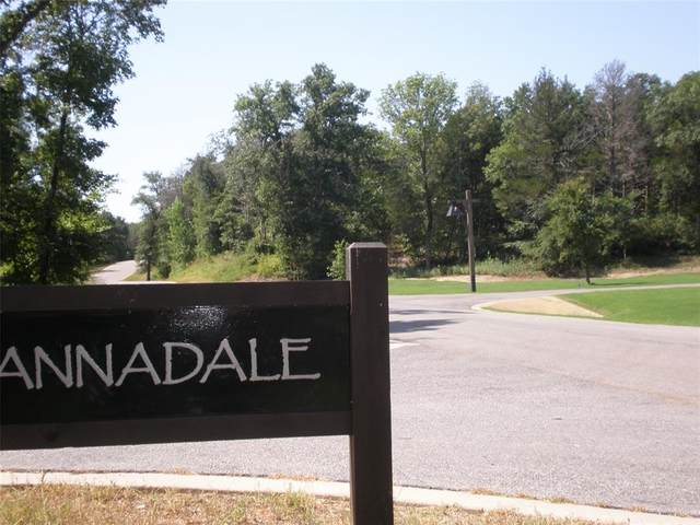 Lot 6 B Annadale, Gordonville, TX 76245 (MLS #14536696) :: The Star Team | Rogers Healy and Associates