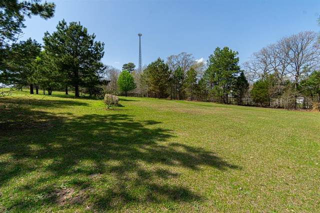 17201 Tranquility, Flint, TX 75762 (MLS #14538858) :: The Hornburg Real Estate Group
