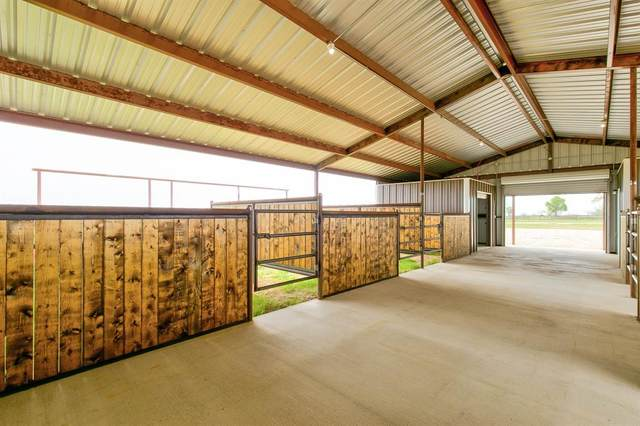 496 County Road 423, Stephenville, TX 76401 (MLS #14539583) :: The Kimberly Davis Group