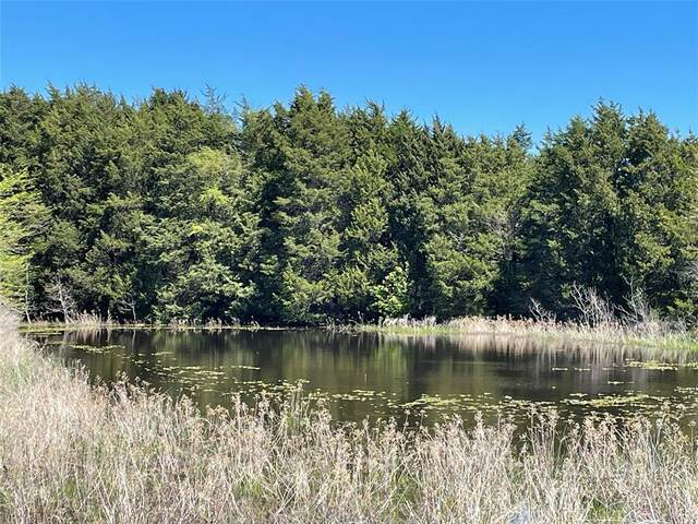 TBD Vz County Road 3816, Wills Point, TX 75169 (MLS #14542674) :: Real Estate By Design
