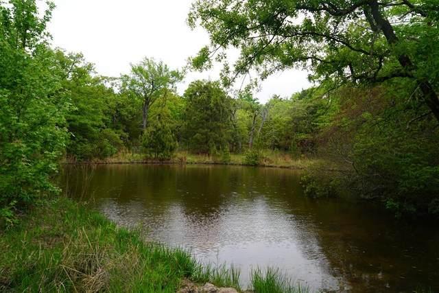 Lot378D Timber Ridge, Larue, TX 75770 (MLS #14554826) :: VIVO Realty