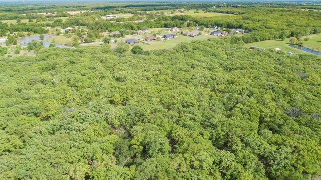 000 County Rd 3318, Greenville, TX 75402 (MLS #14555989) :: The Kimberly Davis Group