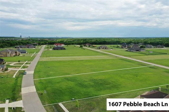 1607 Pebble Beach Lane, Cedar Hill, TX 75104 (MLS #14557729) :: Feller Realty