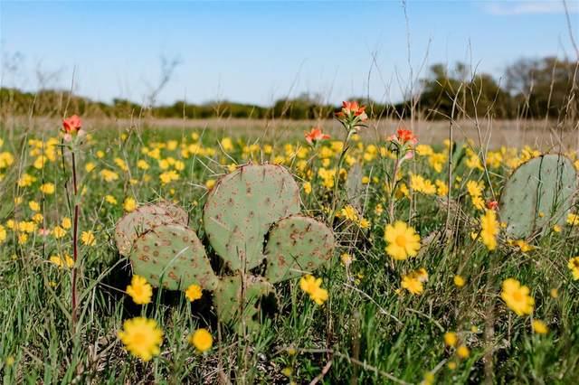 TBD- 85 E Stagecoach Trail, Weatherford, TX 76085 (MLS #14558450) :: Team Hodnett