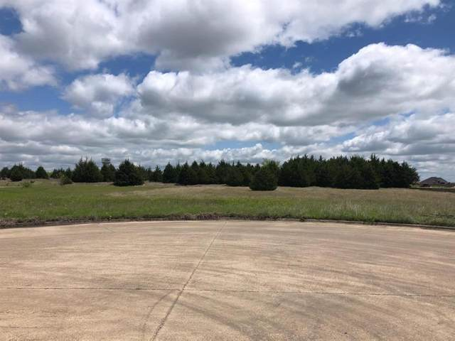 Lot 6 Industrial Drive, Fate, TX 75087 (MLS #14560729) :: The Kimberly Davis Group