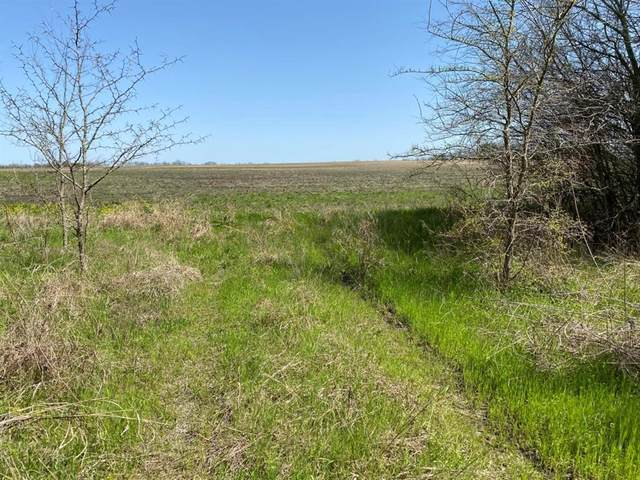 T2 Co Rd 25630, Petty, TX 75421 (MLS #14565304) :: Real Estate By Design
