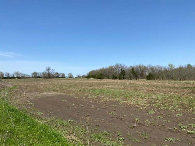T3 Co Rd 25630, Petty, TX 75421 (MLS #14565441) :: Real Estate By Design