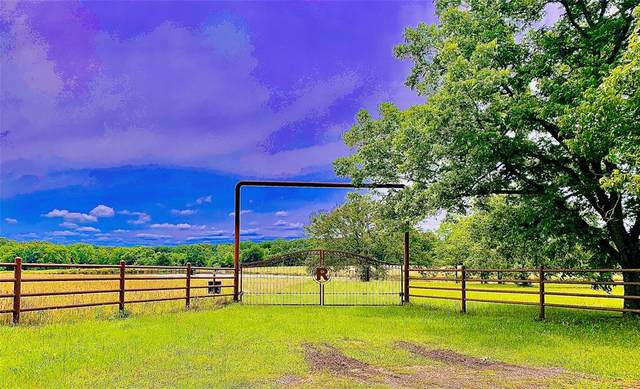 821 Vz County Road 1121, Grand Saline, TX 75140 (MLS #14580232) :: Real Estate By Design