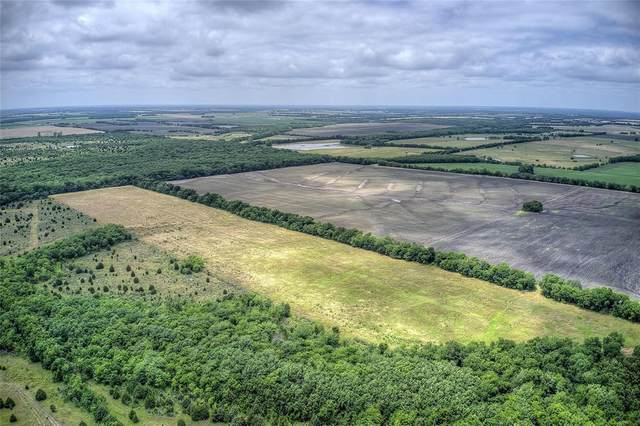 763 County Road 3015, Cooper, TX 75432 (MLS #14585259) :: Real Estate By Design