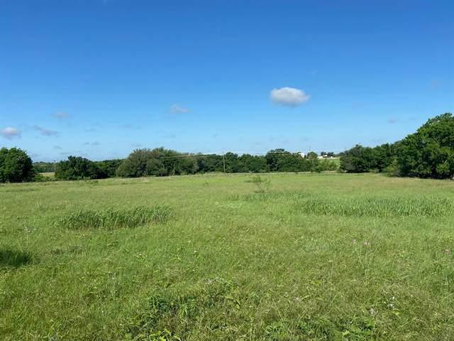 Lot 124 Meadow Lane, Comanche, TX 76442 (MLS #14585956) :: The Daniel Team