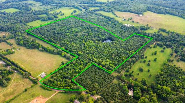 TBD S Mimosa Road, Gilmer, TX 75644 (MLS #14589453) :: Real Estate By Design