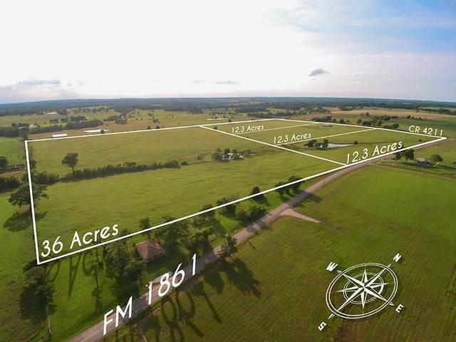 TBD Fm 1861, Ben Wheeler, TX 75754 (MLS #14592065) :: Real Estate By Design