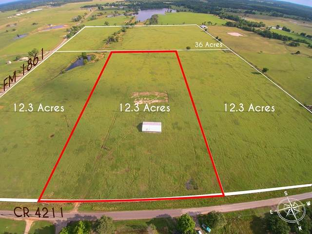 TBD 2 Vz County Road 4211, Ben Wheeler, TX 75754 (MLS #14592170) :: Real Estate By Design