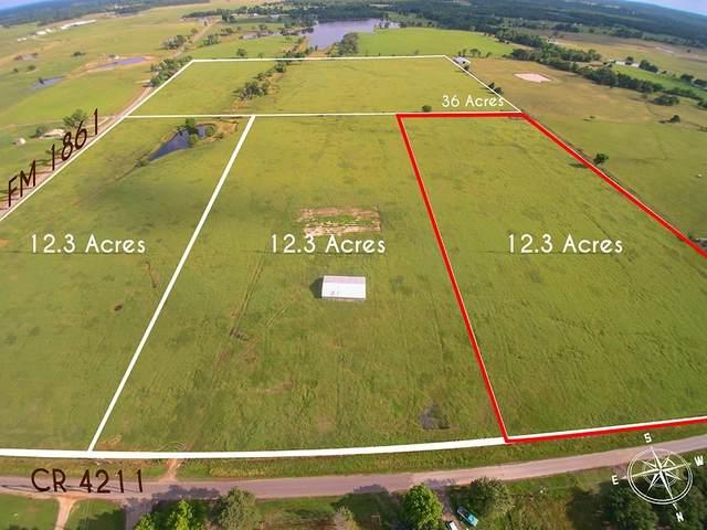 TBD 3 Vz County Road 4211, Ben Wheeler, TX 75754 (MLS #14592214) :: Real Estate By Design