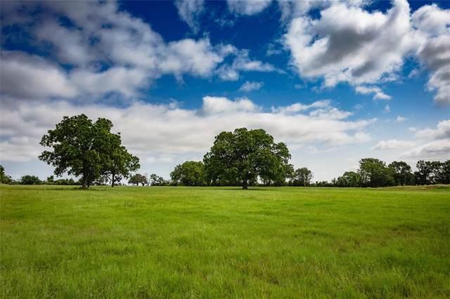 TBD Farm Road 914, Hico, TX 76457 (MLS #14593403) :: Real Estate By Design