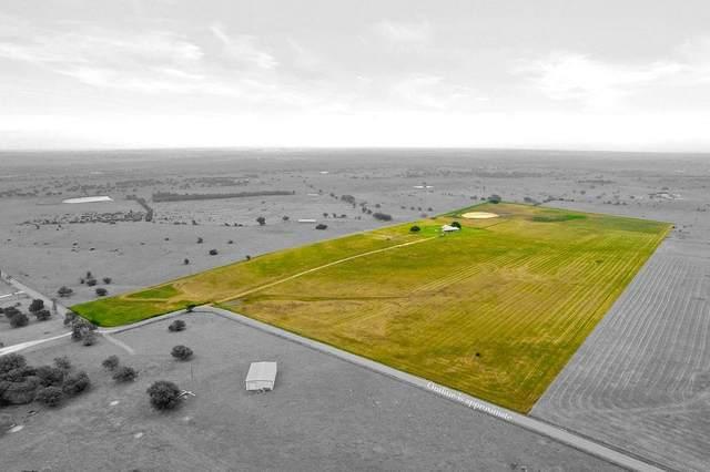 1351 High Prairie Road, Valley Mills, TX 76689 (MLS #14594070) :: Real Estate By Design