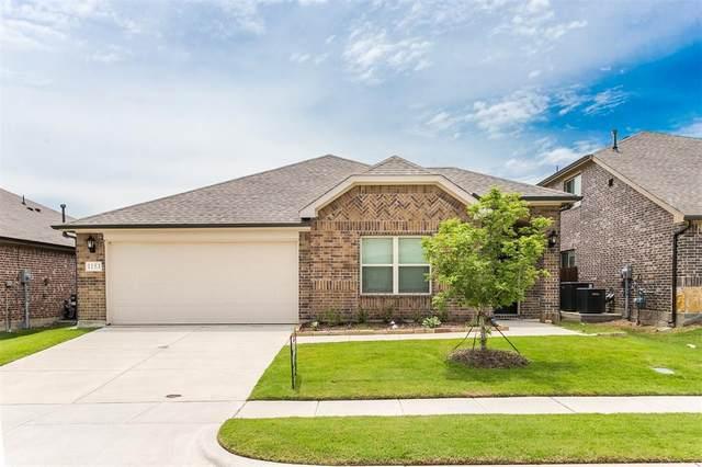 1153 Sheldon Drive, Anna, TX 75409 (MLS #14595233) :: Real Estate By Design