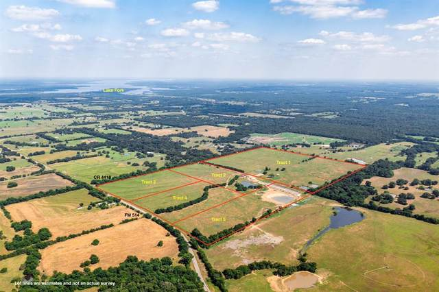 T1 Rs County Road 4410, Point, TX 75472 (MLS #14595401) :: Real Estate By Design