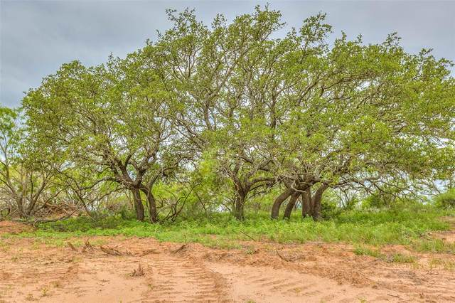0 Other, Ballinger, TX 76882 (MLS #14597995) :: Rafter H Realty