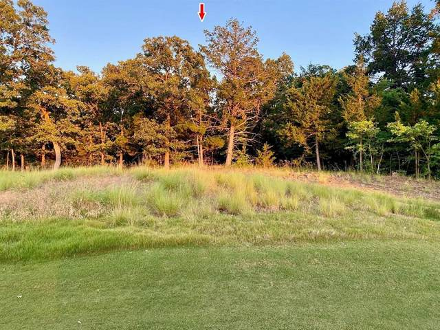 Lot 20 Castle Pines Circle, Gordonville, TX 76245 (MLS #14600114) :: Rafter H Realty