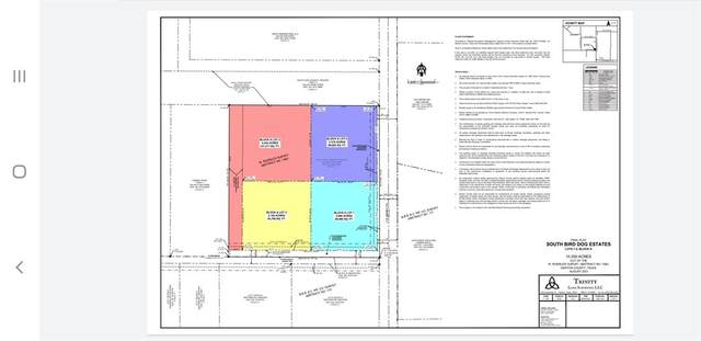 TBA Flow/ Fm1173 Road, Krum, TX 76249 (MLS #14608698) :: The Mauelshagen Group