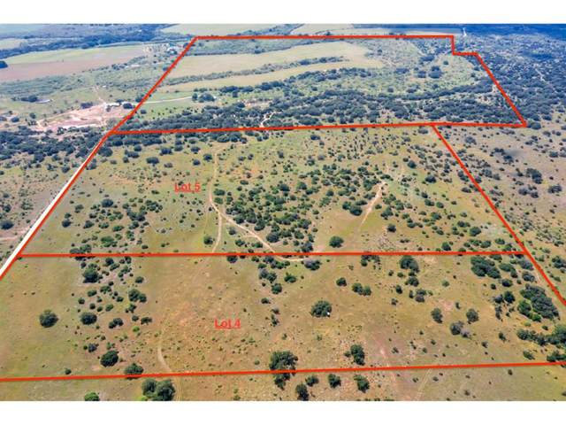 Lot 4 County Road 202, Brownwood, TX 76801 (MLS #14624331) :: Real Estate By Design