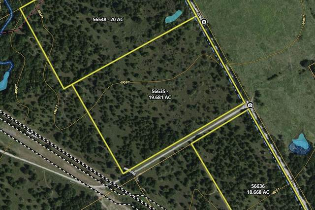 19.6 AC NW County Road 3080, Frost, TX 76641 (MLS #14633995) :: The Tierny Jordan Network
