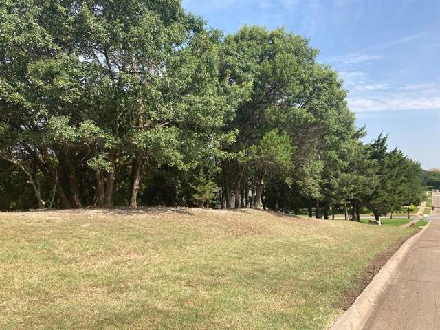 1339 Overlook Circle, Cedar Hill, TX 75104 (MLS #14635407) :: The Good Home Team