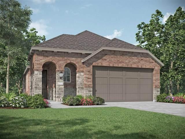 2388 Neff Lane, Forney, TX 75126 (MLS #14638428) :: The Mauelshagen Group