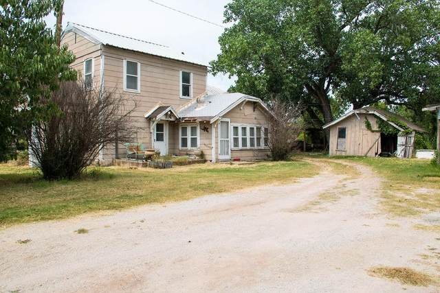 117 County Road 441, Eastland, TX 76448 (MLS #14639057) :: Front Real Estate Co.