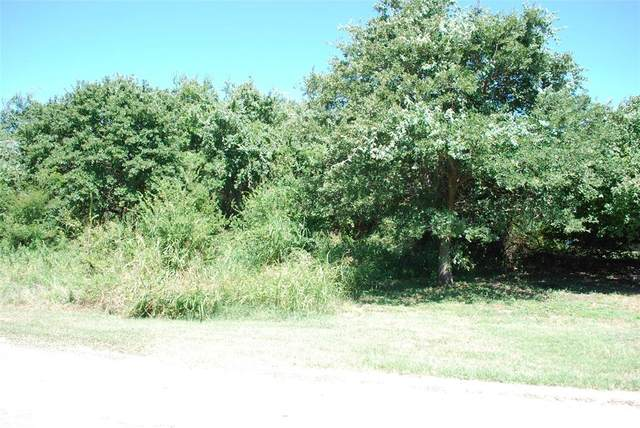 31049 Whispering Meadow Drive, Whitney, TX 76692 (MLS #14645960) :: Real Estate By Design