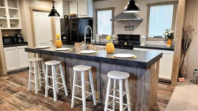 231 Clear Ridge Drive, Runaway Bay, TX 76426 (MLS #14649821) :: Real Estate By Design