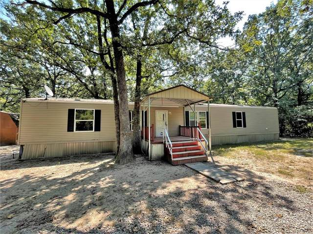 11050 Lakeview Drive, Wills Point, TX 75169 (MLS #14660834) :: 1st Choice Realty