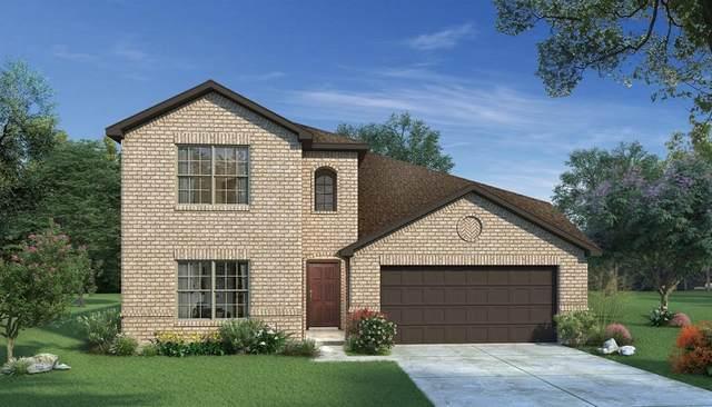 3934 Bellingham Lane, Heartland, TX 75126 (MLS #14669455) :: Real Estate By Design