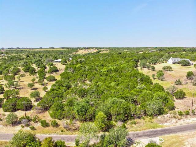 1985 Lighthouse, Bluff Dale, TX 76433 (MLS #14674044) :: The Star Team | Rogers Healy and Associates