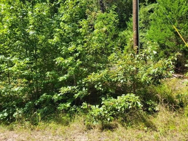 TBD Wild Wood Street, Murchison, TX 75778 (MLS #14674360) :: 1st Choice Realty